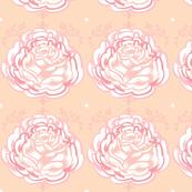 Rose Blossom in Sorbet