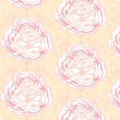 Rose Blossom in Vintage Sorbet