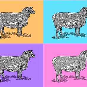 Lavender Sheep 2