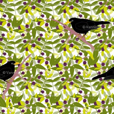 Myrtle and Blackbirds