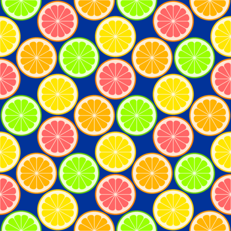 citrus slices S43X fabric by sef on Spoonflower - custom fabric