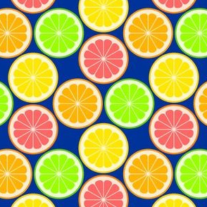 02240294 : citrus slices S43X : fruity