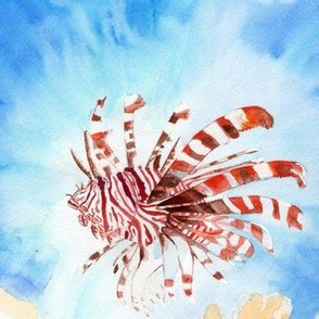 Lionfish- sized for Organic Cotton Knit