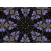 Rrrrrimg_3675.kaleidescope.5.repeat.pattern.periwinkle..k.flutterbys._shop_thumb