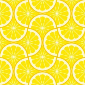 02243961 : citrus scale 4g X : lemon