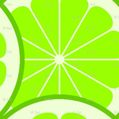 citrus scale 1x