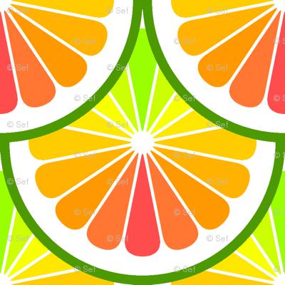 02245699 : citrus scale : rainbow