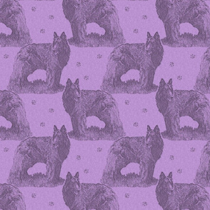 Belgian sheepdog standing stamp - purple