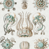 Sea Creatures on Linen