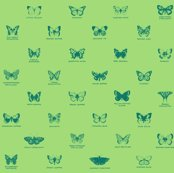 Rrrbutterfly_serene_green_shop_thumb