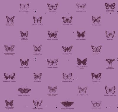 butterfly alphabet - twilight mauve