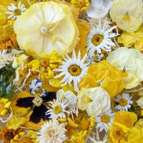 Yellow Jewel Mix