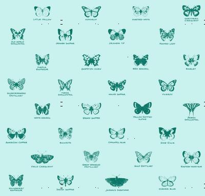 butterfly alphabet - spruce
