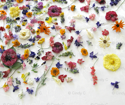 Dried Flower Jewels