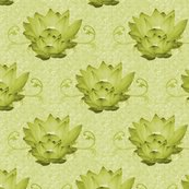 Waterlily2_shop_thumb