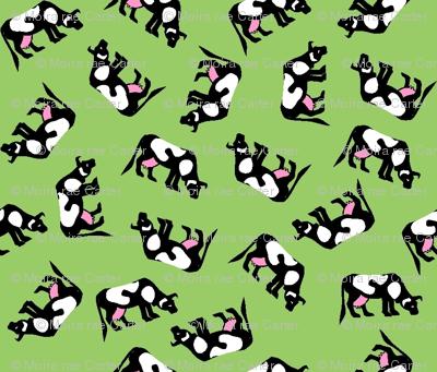 Heard of cows?!