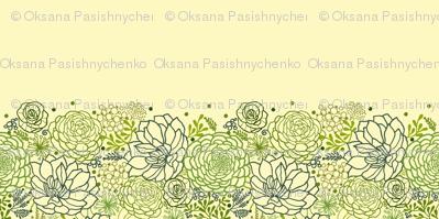 Succulents matching border