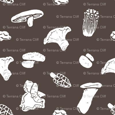 Mushrooms in Mushroom