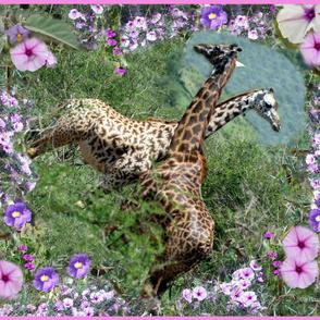 Giraffe in purple flowers