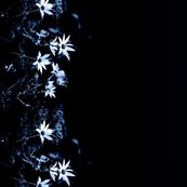 Midnight_garden_fabric3_gls_shop_thumb