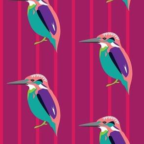 Jazzy kingfisher