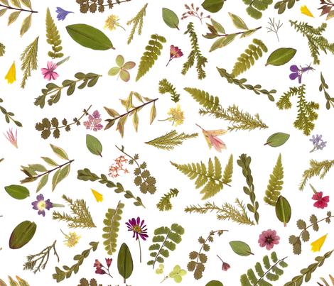 little meadow garden fabric by mypetalpress on Spoonflower - custom fabric