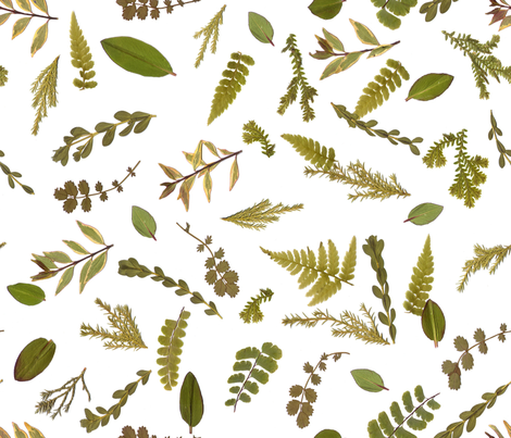 leaf meadow fabric by mypetalpress on Spoonflower - custom fabric