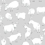 Rrnew_grey_goat_tile_shop_thumb
