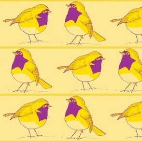 robin pair lemon and purple