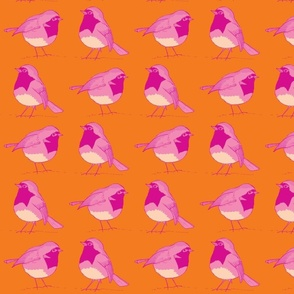 robin pair tangerine and rose