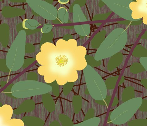 Buttercup_bush_2_changed_yellow_dark_shop_preview