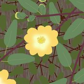 Buttercup_bush_2_changed_yellow_dark_shop_thumb