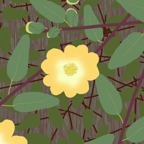 buttercup_bush_2_changed_yellow_dark