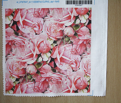 Rrroses_comment_406388_preview