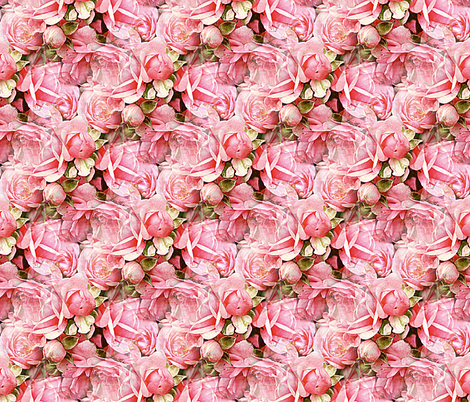 Pink Roses fabric by arts_and_herbs on Spoonflower - custom fabric