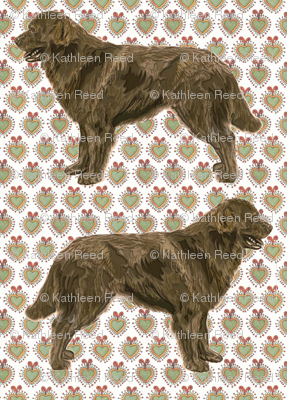 The Brown Newfoundland Dog Fabric