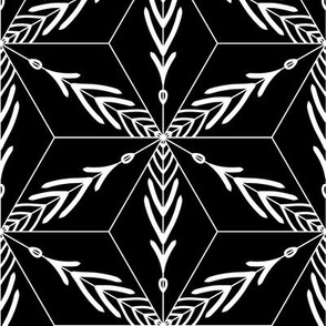 Graphic geometric