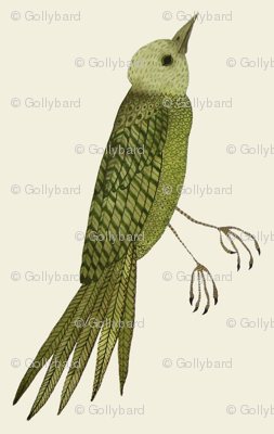 songbird east natural