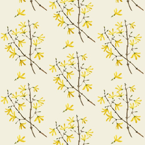 forsythia natural