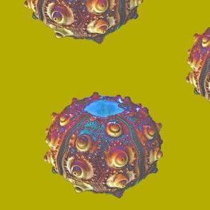 disco urchin dot- big