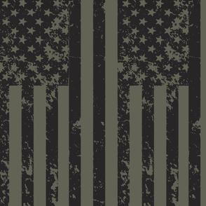 Post Apocolypic Flag