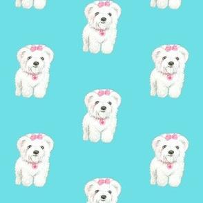 Bichon Frise Cute fluffy dog