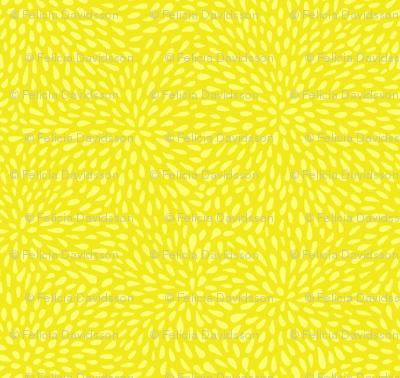 Watermelon seeds - yellow