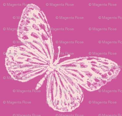 Raspberry Butterflies
