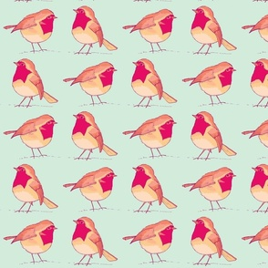 robin pair pinks and aqua