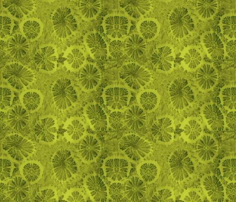 Diotomata fabric by nalo_hopkinson on Spoonflower - custom fabric