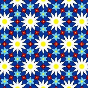 SC64X E flowers