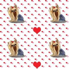 Yorkie hearts