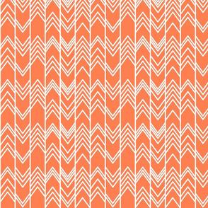 Fall Coral Ikat Ziggy - Coral Chevron Herringbone