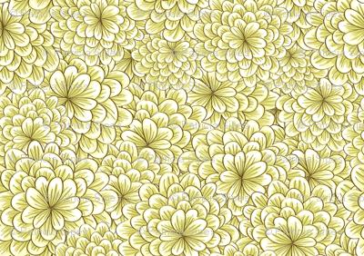 Creme Chrysanthemum